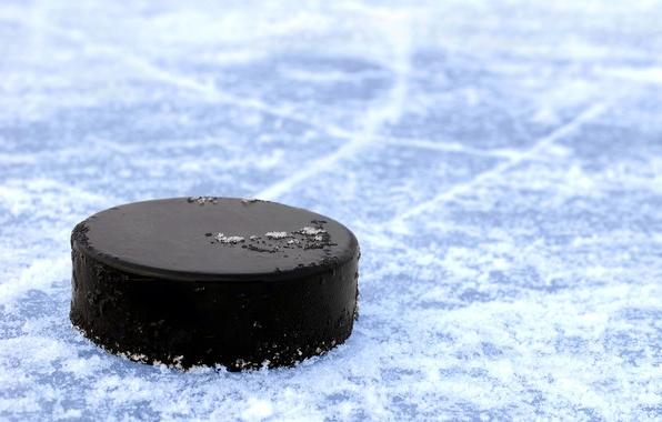 Хоккейная шайба