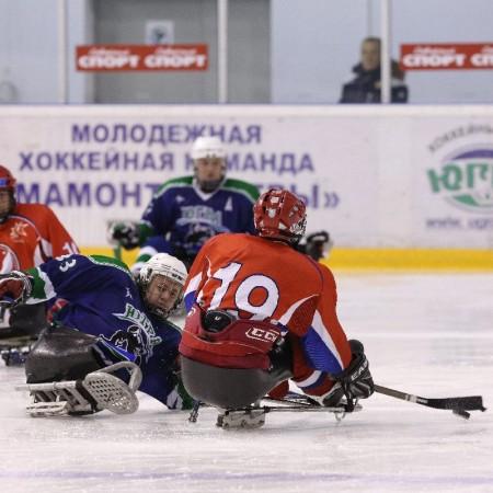 Следж-хоккейный клуб «Югра» фото 2015-2016
