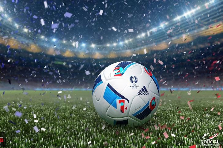 Официальный мяч чемпионата Европы 2016 года