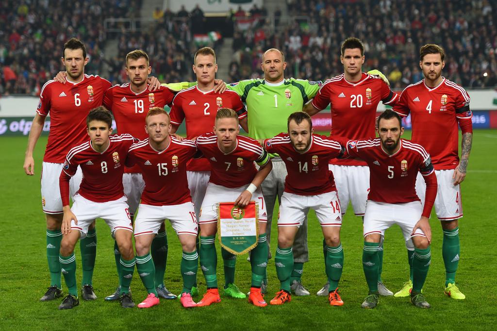 Сборная Венгрии на чемпионате Европы по футболу 2016