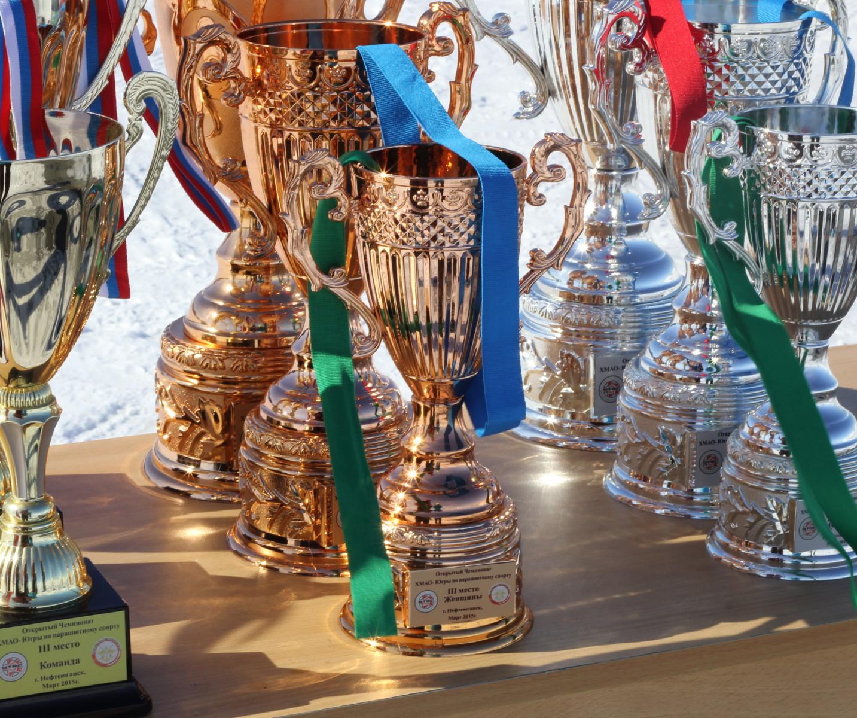 Кубки чемпионата ХМАО по парашютному спорту