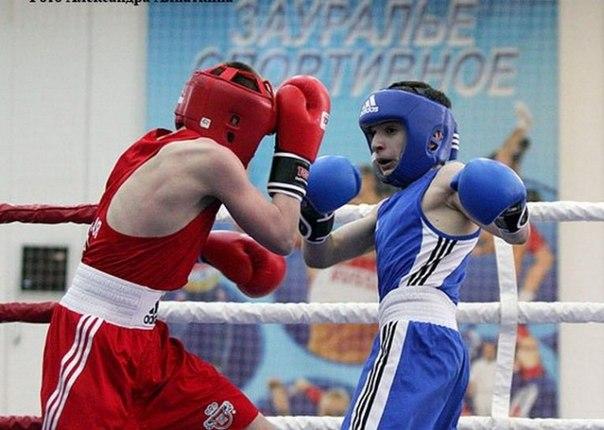 Боксеры Нижневартовска