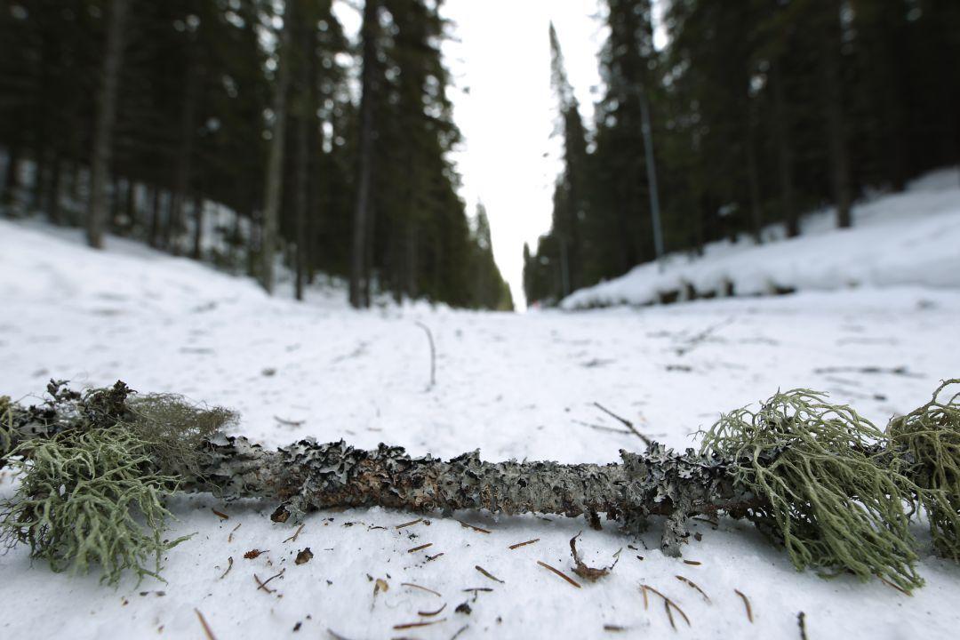 Плохая погода в Ханты-Мансийске