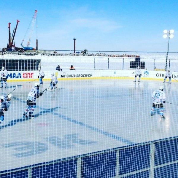 арктический хоккей